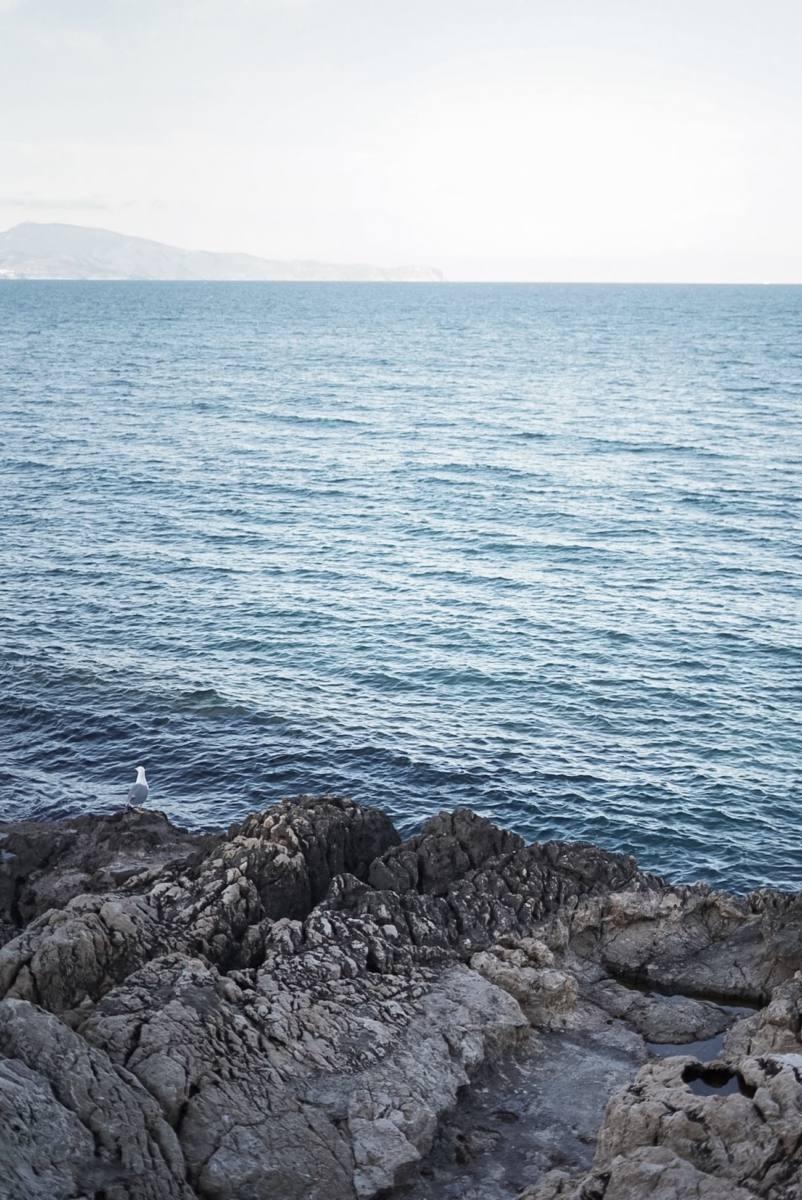 Ultramar - Mar, arte y gastronomia en la proa de l'Escala 100